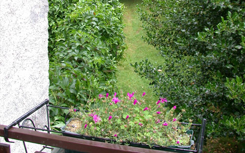 Bed and Breakfast Lago d'Iseo - vista
